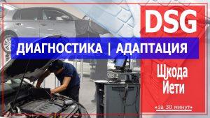 Диагностика ДСГ Шкода Йети