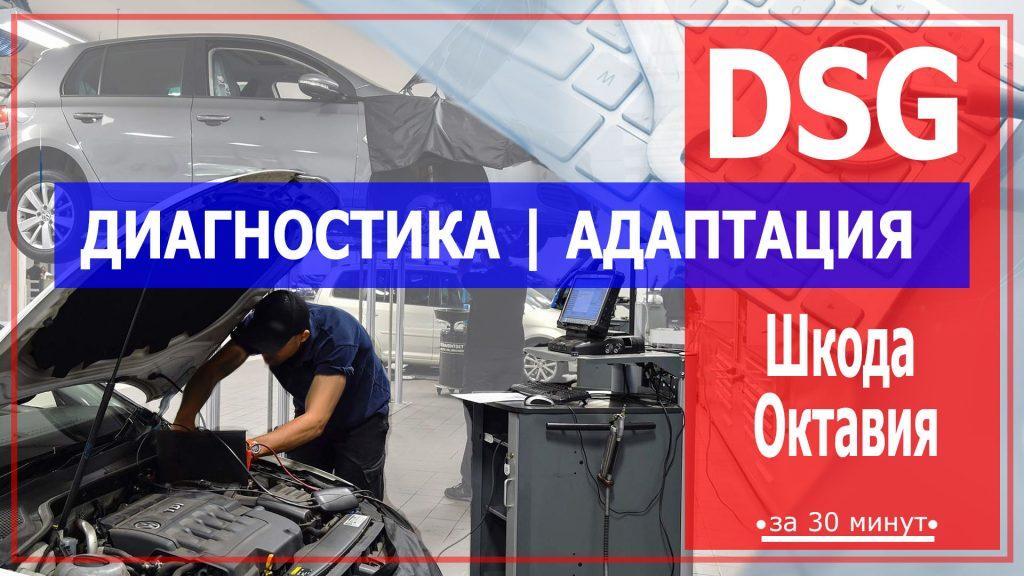 Диагностика ДСГ Шкода Октавия