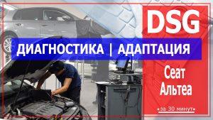 Диагностика ДСГ Сеат Альтеа